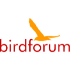 Bird Forum Shop discounts