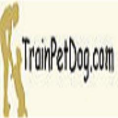 Train Pet Dog